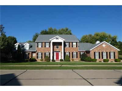 St Louis Single Family Home For Sale: 12819 Sarah Ann Court