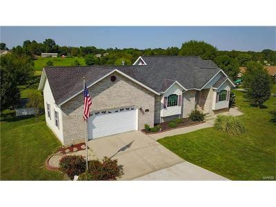 Bethalto Single Family Home For Sale: 3837 McCoy Rd.