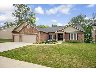 O'Fallon Single Family Home For Sale: 1353 Shady Parc Court