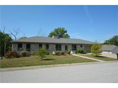 Hannibal MO Single Family Home For Sale: $365,000