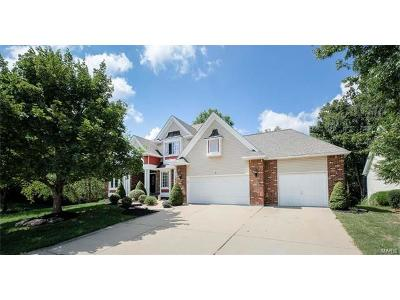 Lake St Louis Single Family Home For Sale: 1 Stone Falcon Court