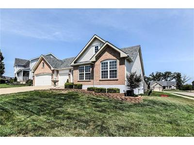 Wentzville Single Family Home For Sale: 902 Ellis Park Drive