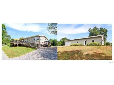 Scott County, Cape Girardeau County, Bollinger County, Perry County Farm For Sale: 385 County Road 391