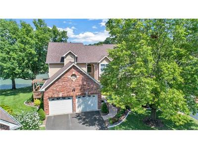 Chesterfield Single Family Home Option: 1516 Timberlake Manor Pkwy