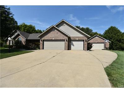 Troy IL Single Family Home For Sale: $389,900