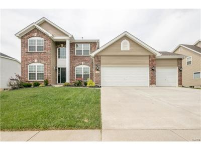 Lake St Louis Single Family Home For Sale: 53 Mason Circle