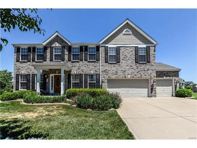Lake St Louis Single Family Home For Sale: 915 Bannon Circle Court
