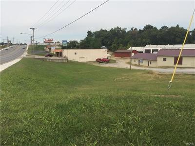 Scott County, Cape Girardeau County, Bollinger County, Perry County Commercial For Sale: 1311 Gloria Street