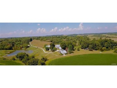 Scott County, Cape Girardeau County, Bollinger County, Perry County Single Family Home For Sale: 2057 Pcr 422