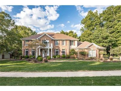 Chesterfield Single Family Home For Sale: 17725 Drummer Lane