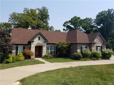 Augusta, Dutzow Single Family Home For Sale: 244 Berg Crossing Drive