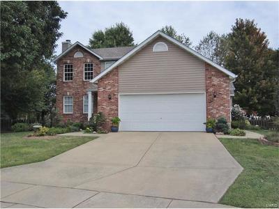 Edwardsville Single Family Home For Sale: 6801 Quail Walk