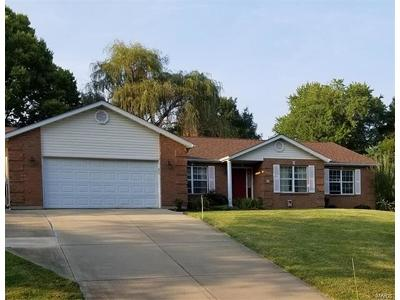Fairview Heights Single Family Home Option: 21 Clark Drive