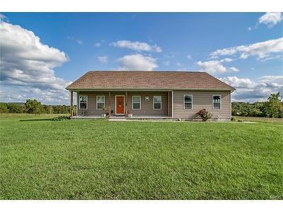 Farmington Single Family Home For Sale: 1042 Meadowbrook Lane