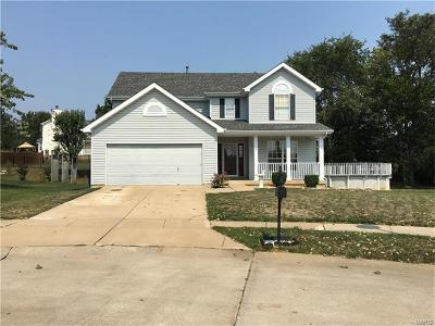 Wentzville Single Family Home For Sale: 2054 Peine Forest Drive