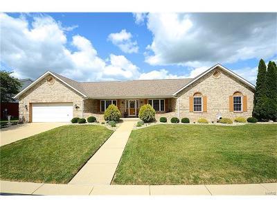 O'Fallon Single Family Home For Sale: 156 Summerlin Ridge