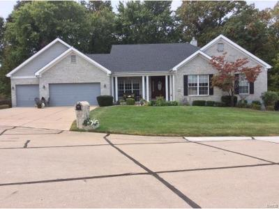 Florissant Single Family Home For Sale: 15608 Brunswick Manor Ct