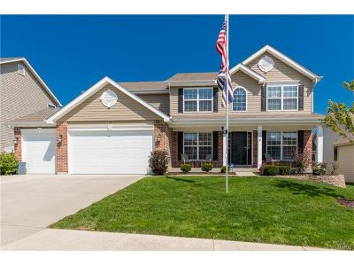 Single Family Home For Sale: 418 Valley Spring