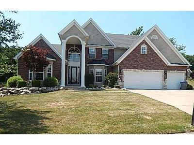Single Family Home For Sale: 1303 Soft Crossing Lane