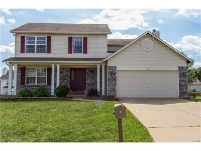 O'Fallon Single Family Home For Sale: 1356 Sunview Drive