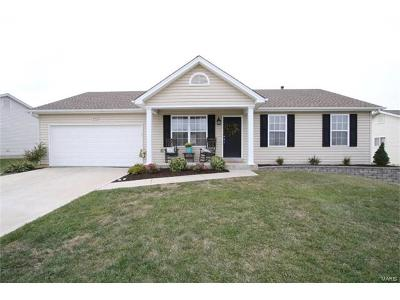 Wentzville Single Family Home For Sale: 753 Lost Canyon Boulevard