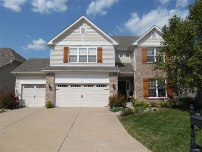 Single Family Home For Sale: 191 Berry Manor Circle