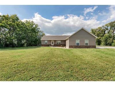Edwardsville Single Family Home For Sale: 3703 Sand Rd.