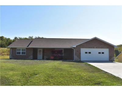 Hannibal MO Single Family Home For Sale: $168,500