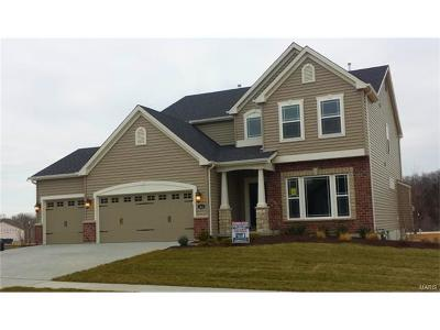 Wentzville Single Family Home For Sale: 313 Wilmer Valley Drive