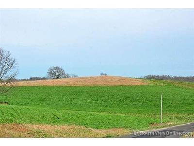 Scott County, Cape Girardeau County, Bollinger County, Perry County Farm For Sale: County Road 318