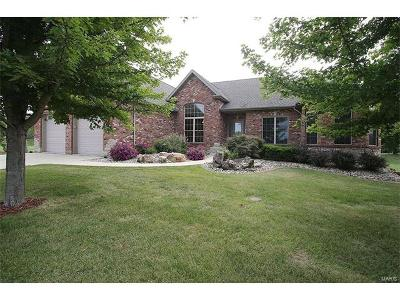 Edwardsville Single Family Home For Sale: 6948 Drew Drive