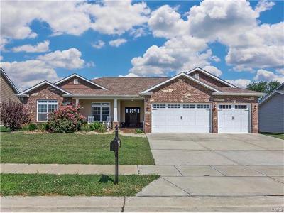 Glen Carbon Single Family Home For Sale: 133 Meridian Oaks Drive