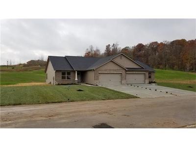 Caseyville Condo/Townhouse For Sale: 8019 Villa Valley