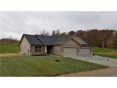 Caseyville Condo/Townhouse For Sale: 8017 Villa Valley