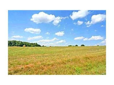 Scott County, Cape Girardeau County, Bollinger County, Perry County Farm For Sale: Hwy Aa