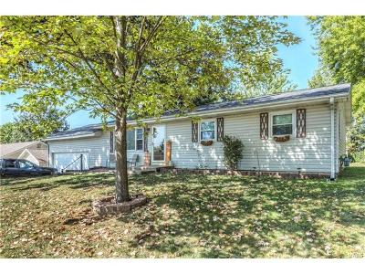 Single Family Home For Sale: 28 Westview Drive