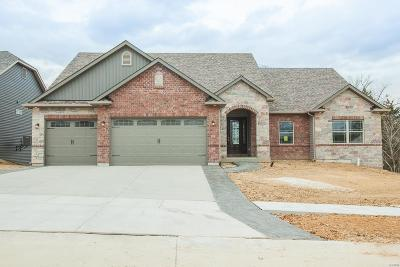 St Charles County Single Family Home For Sale: 105 Peine Valley Court