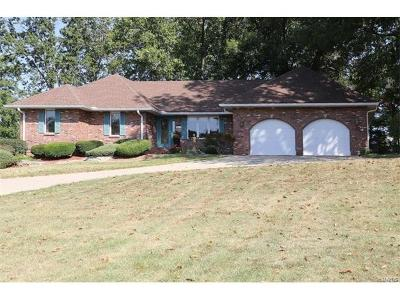 Alton Single Family Home For Sale: 2617 Jamison Drive