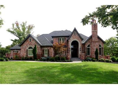 Single Family Home For Sale: 12960 Thornhill Drive