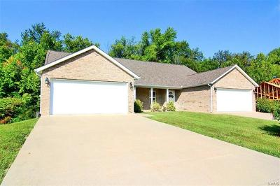 Scott County, Cape Girardeau County, Bollinger County, Perry County Multi Family Home For Sale: 4823 Coventry Drive