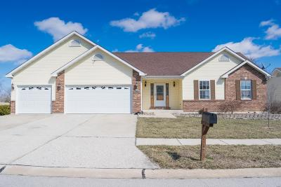 Lincoln County, Warren County Single Family Home For Sale: 312 Waggoner Boulevard