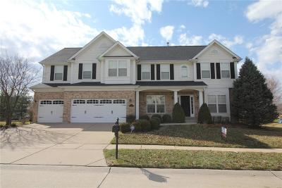 Chesterfield Single Family Home For Sale: 1216 Wildhorse Meadows Drive