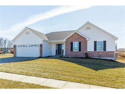 Single Family Home For Sale: Anna - Stone Ridge Canyon