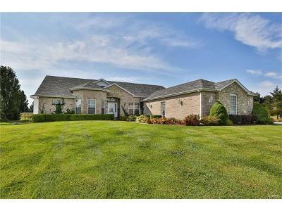 Marthasville, Lake Sherwood Single Family Home For Sale: 60 Glennstone Court