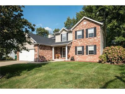 O'Fallon IL Single Family Home For Sale: $244,900