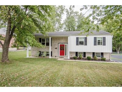 Ellisville Single Family Home For Sale: 1006 Carole Lane