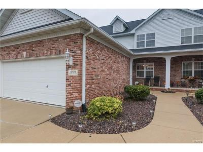 Edwardsville Single Family Home For Sale: 409 Country Club View Drive