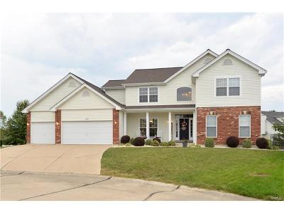 St Peters Single Family Home For Sale: 229 Greenbriar Bluffs Drive