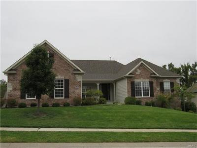 ST CHARLES Single Family Home For Sale: 2409 Spring Mill Estates Drive