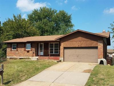 ST CHARLES Single Family Home For Sale: 19 Willow